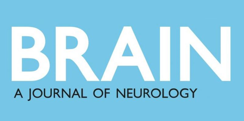 Brain Journal of Neurology